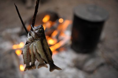 Photo: Trout dry near a fire at the Kings Canyon National Park in the Sixty Lake Basin, California.