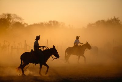 Photo: Cowboys silhouetted in a glowing cloud of dust.