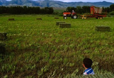 Photo: A boy watches his grandfather cut hay in an Idaho field.