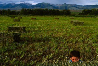 Photo: A boy watches hides in an Idaho field.