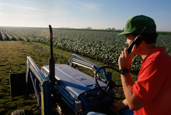 Photo: A farmer takes a call on his cell phone from a soybean field in Flatville, Illinois.
