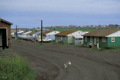 Photo: St. Paul Island in the Pribilofs (Alaska).