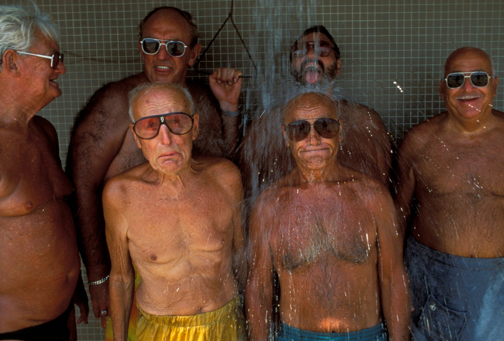 Photo: The Boston Brownies, so named from the tan resulting from the daily swims they take in Boston Harbor.