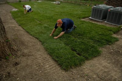 Photo: Workers from Todd Valley Farms put turf down in a family's backyard.
