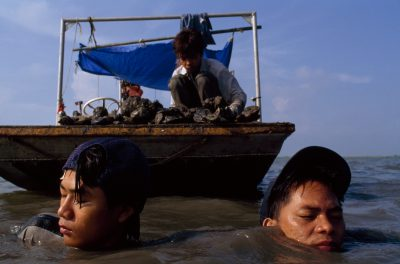 Photo: Vietnamese teenagers search for oysters with hands and feet to earn pocket money.