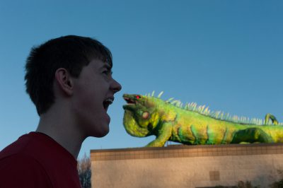 Photo: Cole Sartore pretends to face off with Iggy, the Fort Worth Zoo's giant iguana mascot.
