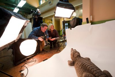 Joel Sartore and Anne Thompson of NBC Nightly News prepare to photograph a West African dwarf crocodile (Osteolaemus tetraspis tetraspis) at the Lincoln Children's Zoo.