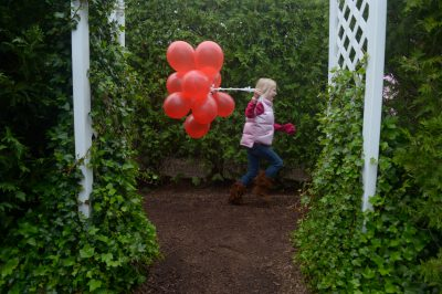 Photo: The Garden Maze at Luray, VA.