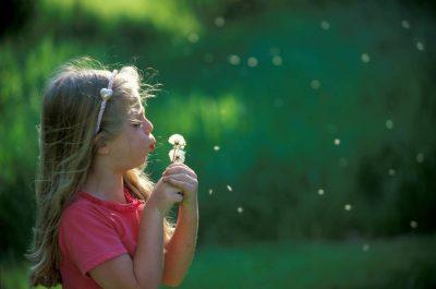 Photo: Ellen Sartore blows the seeds off a dandelion.