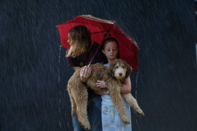 """Photo: Emma, Ellen and Muldoon the dog play in the """"rain"""" from a sprinkler in Lincoln, NE."""
