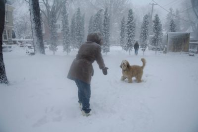 Photo: A woman and her daughter play outside with their dog after a snowstorm in Lincoln, Nebraska.