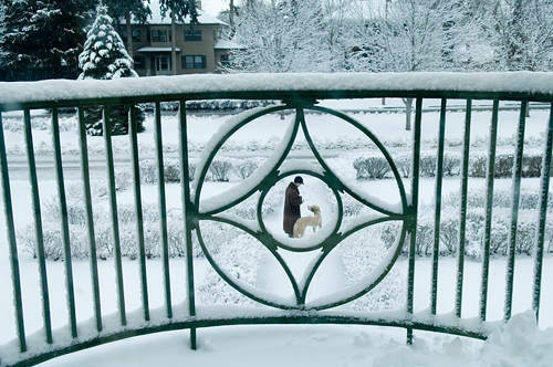 Photo: A young boy with his dog, Muldoon, on a snowy day in Lincoln.