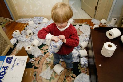 Photo: A toddler makes a mess out of a box of toilet paper.