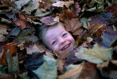 Photo: A young girl plays in fallen autumn leaves.