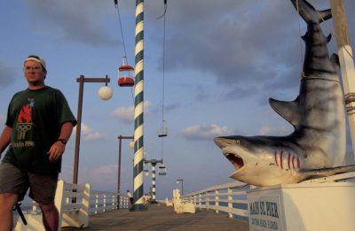 Photo: Shark sign at Daytona Beach, Florida.