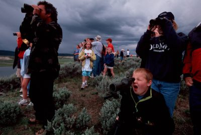 Photo: Crowds gather to watch wolves and other wildlife in Yellowstone National Park's Lamar Valley.