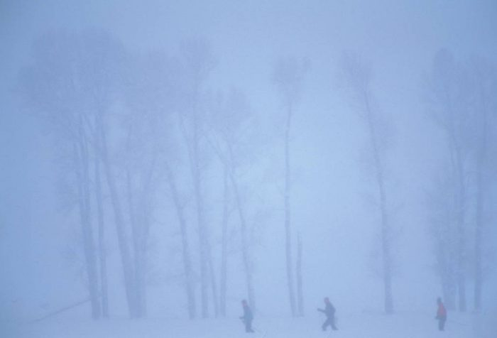 Photo: Hikers in Yellowstone National Park.