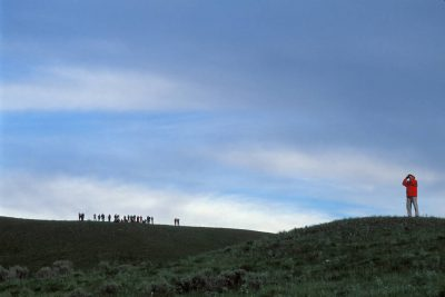Photo: Crowds gather to watch wolves and other wildlife in Yellowstone National Park.