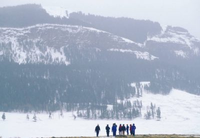 Photo: Ecotourists watch for wolves and other wildlife in Yellowstone National Park.