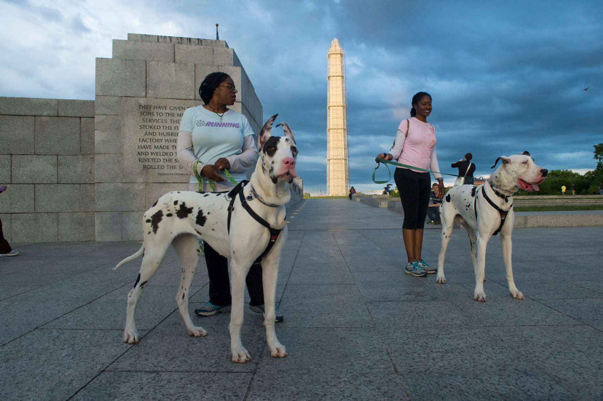 Photo: Two sisters with their great danes at the WWII Memorial in Washington, DC.
