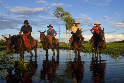 Photo: Pantanieros (cowboys) on horseback during the wet season at Caiman Ranch in Brazil's Pantanal.