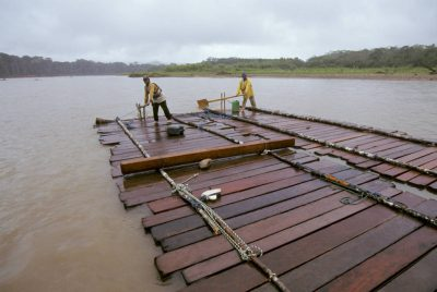 Photo: Rafts made of mahogany are smuggled out of Madidi National Park on the Tuichi River (Bolivia.) Groups like EcoBolivia work to educate the locals on the real value of their land in hopes of preventing logging and deforestation.