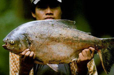 Photo: A native of Madidi National Park in Bolivia holds up a fishcaught in the Park's Tuichi River.