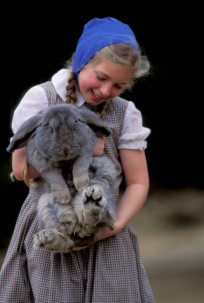 Photo: A girl holds a pet rabbit in a Hutterite community near Norfolk, CT.