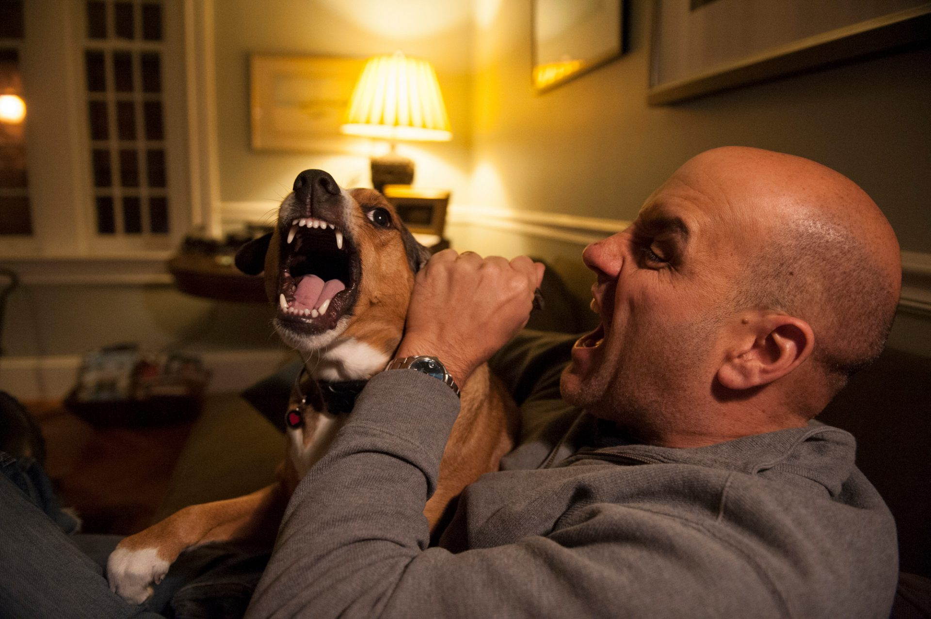 Photo: A man pretends to bite his dog's ear in Washington, DC.