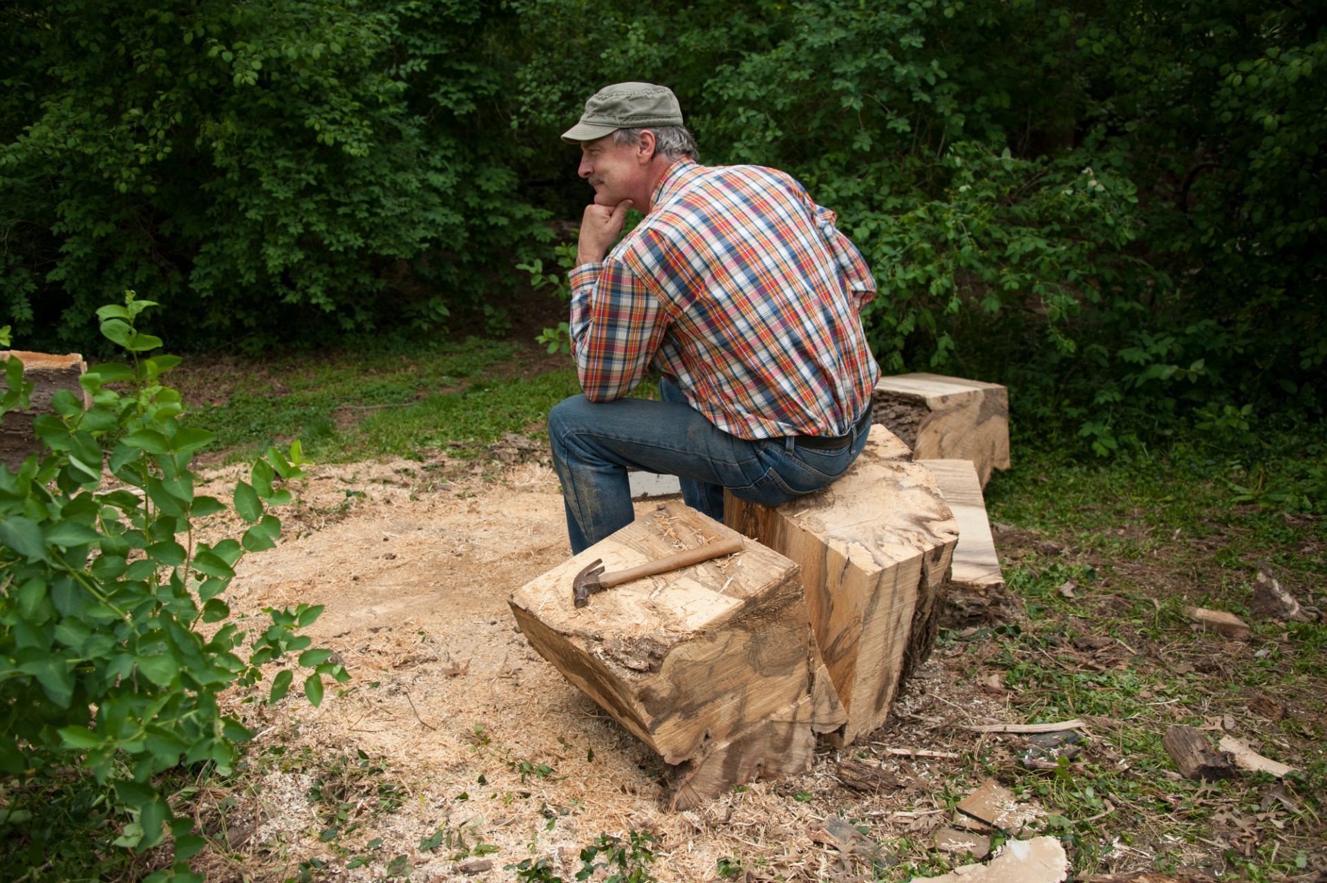 Photo: A man rests after cutting down an old tree.