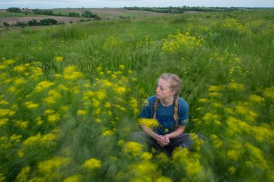 Photo: A teenage girl sits in a field of sanddune wallflowers, western wallflowers, or prairie rockets, Erysimum capitatum.