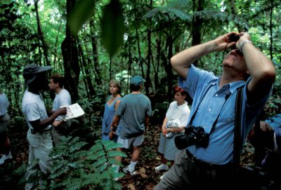 Photo: Tourists hiking through the rainforest in St. Lucia in the Caribbean.