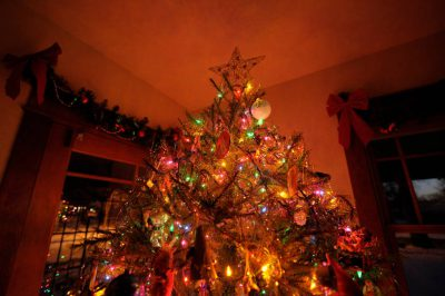 Photo: A Christmas tree lights a living room in Lincoln, Nebraska.