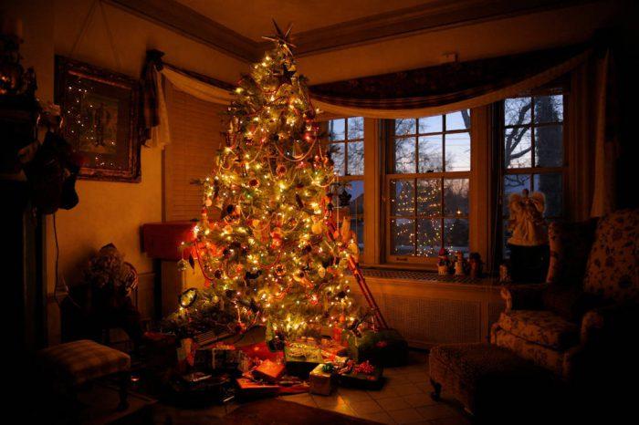 Photo: A Christmas tree lights a living room in Lincoln, Nebraska.