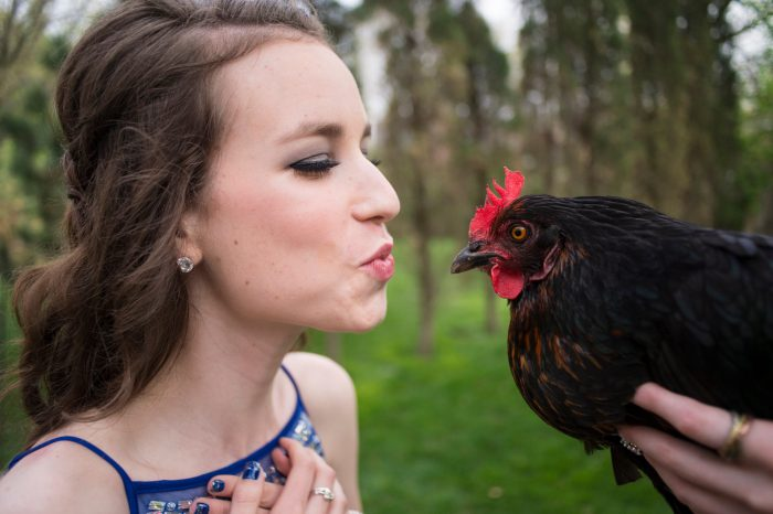 Photo: A teenage girl leans in to kiss and her friend's pet chicken.