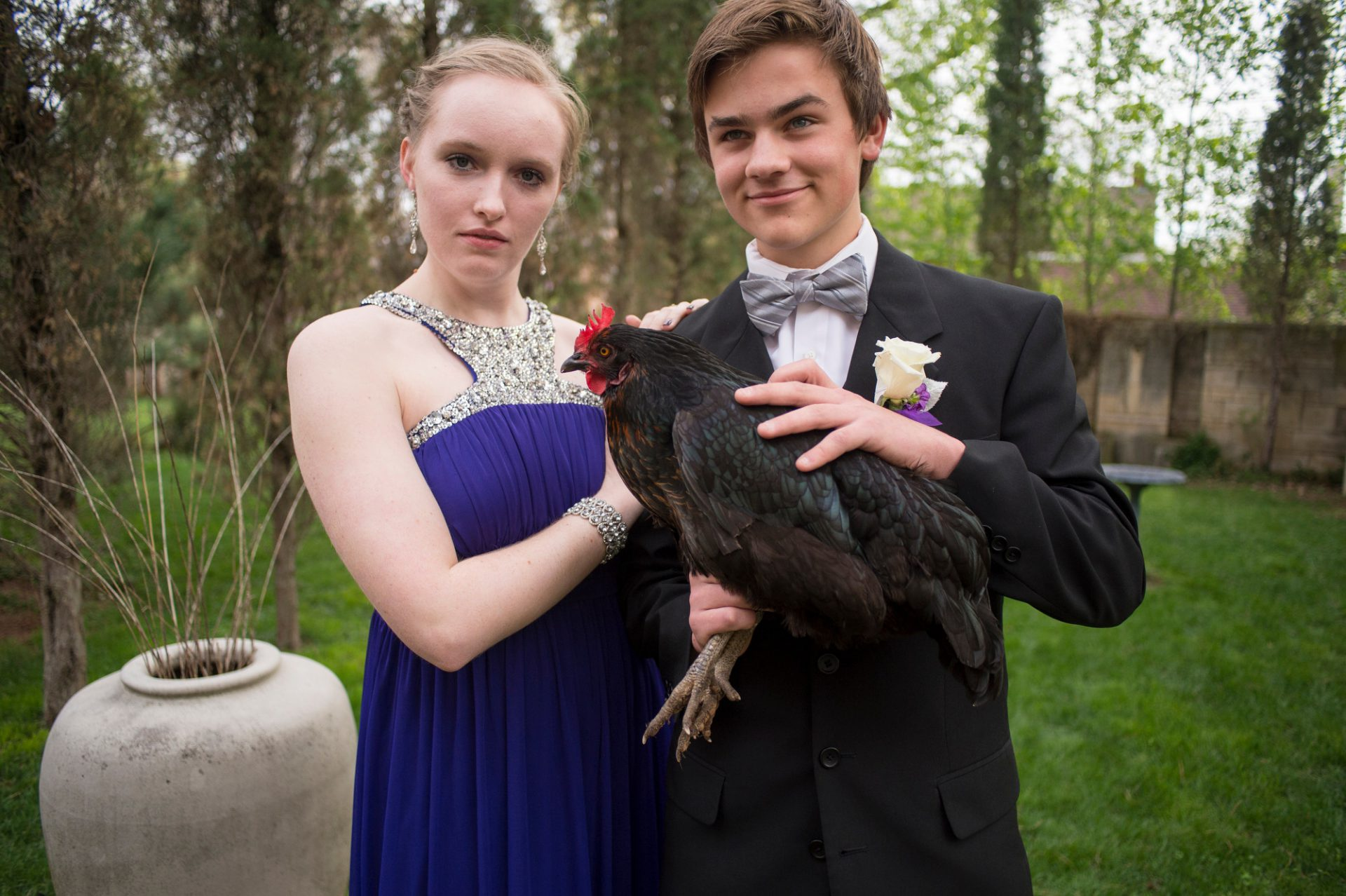 Photo: Two teenagers pose for portraits with a chicken before heading to their senior prom.