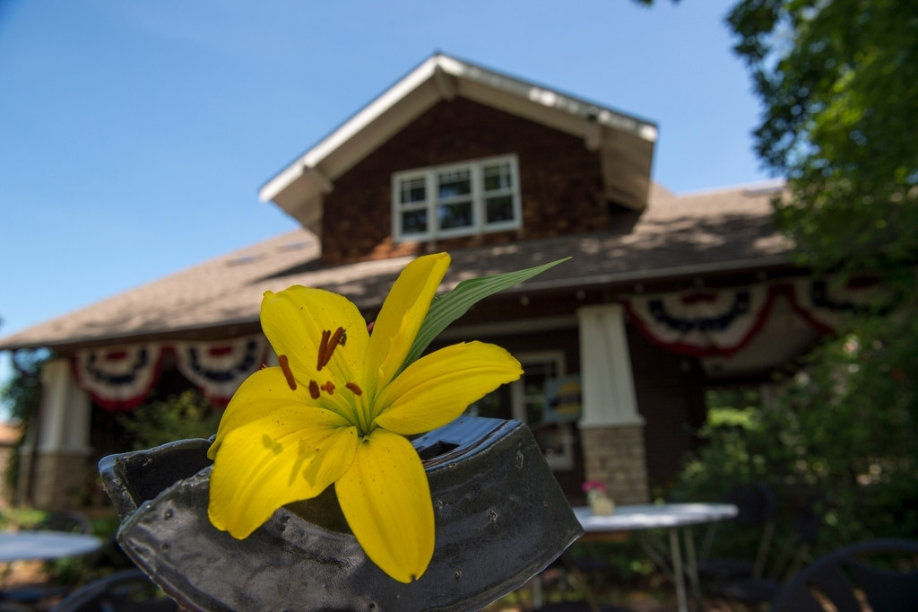 Photo: A flower decorates the yard of a house.