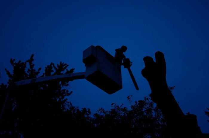 Photo: A man saws off a tree trunk from a utility basket in Lincoln, Nebraska.
