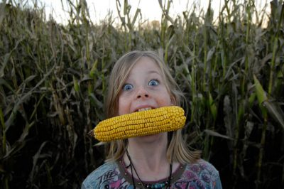 Photo: A young girl pretends to eat a corn cob at a pumpkin patch near Roca, NE.