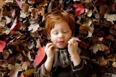 Photo: A 3-year-old boy plays in fall leaves.