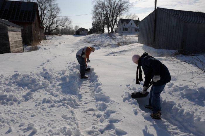 Photo: Clearing a path at the Dunbar farm