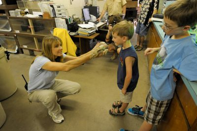 Photo: Children have an up-close encounter with a skink at the Gladys Porter Zoo in Brownville, TX.