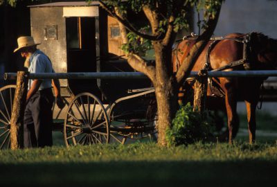Photo: A Mennonite man with a horse-drawn carriage near Partridge, KS.