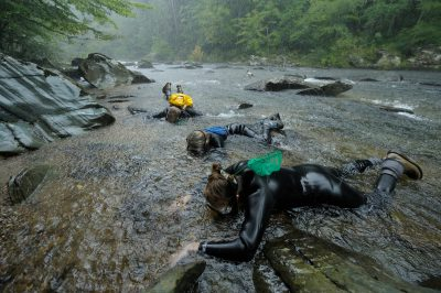 Biologists work in the pouring rain, searching for a rare fish, the smoky madtom (Noturus baileyi) ( IUCN: Critically endangered, US: Endangered) in Abrams Creek, TN.