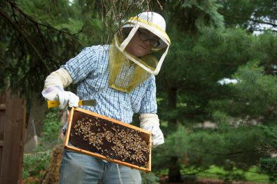Photo: A teenage boy sets up a bee hive near Lincoln, Nebraska.