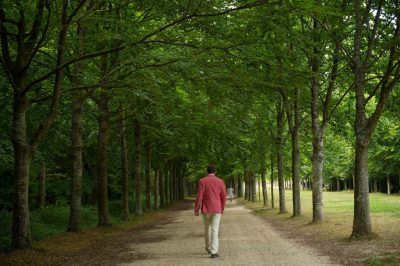 Photo: A man walks down a path shaded by trees in Versailles, France.