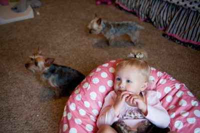 Photo: A little girl with her two dogs in Lincoln, Nebraska.
