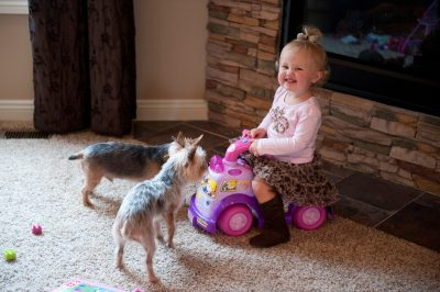Photo: A little girl plays with her dogs in Lincoln, Nebraska.