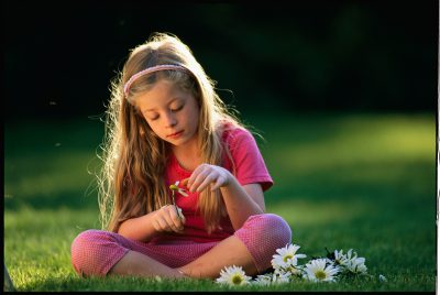 Photo: A young girl plucks petals off a daisy.