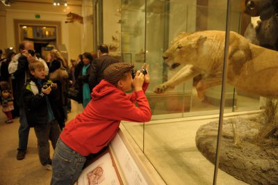 Photo: An inquisitive mind takes a photo inside the Smithsonian Museum of Natural History in Washington, D.C.